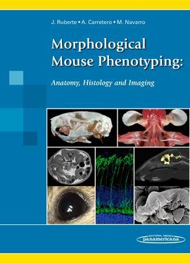 MORPHOLOGICAL MOUSE PHENOTYPING: